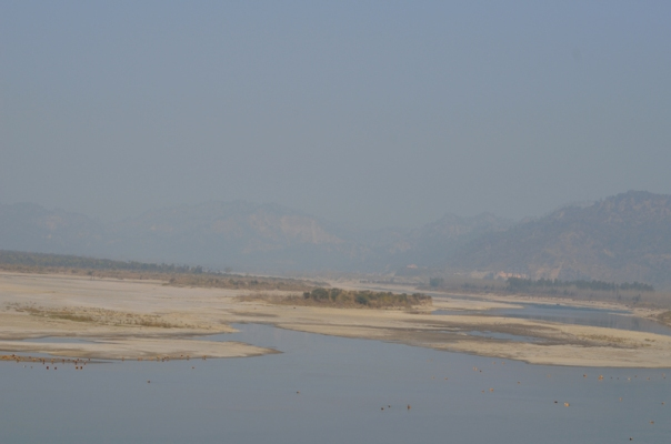 The Hathni Kund barrage creates a one km sq small wetland