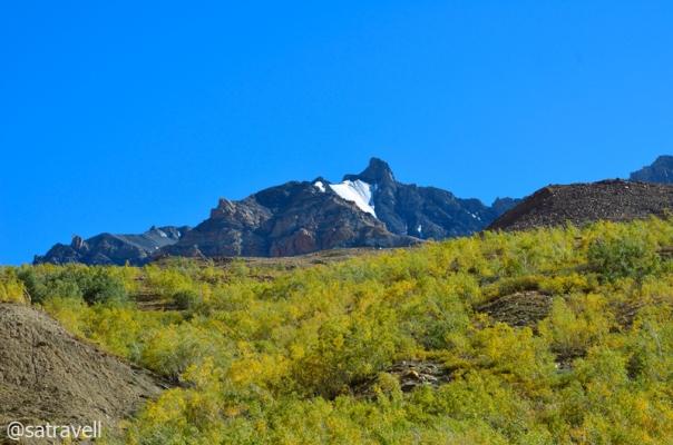 Peak 5255 m Shilatakar