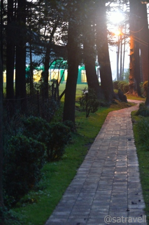 Patnitop is an ideal destination to take wooded walks