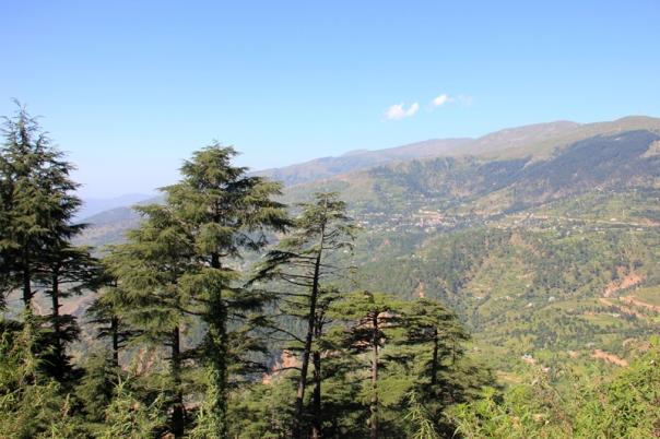 Descending the Patni Top towards Tawi basin