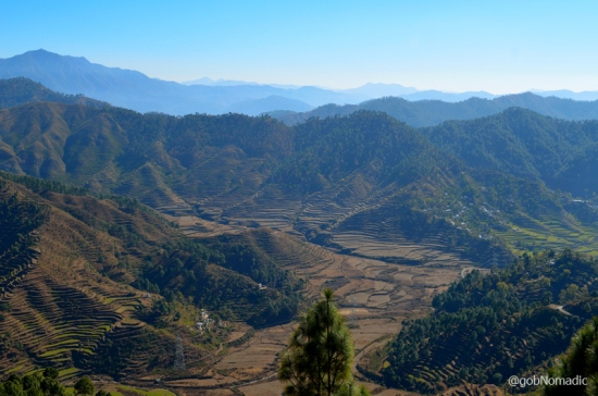 The terraced fields of fertile Nayar Valley