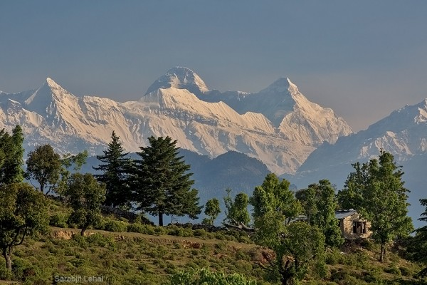 View towards Nanda Devi twins from Chaukori. Photo Credit Sarabjit Lehal