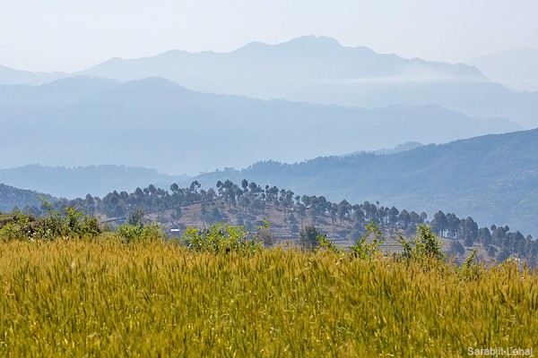 View towards Pithoragarh hills.