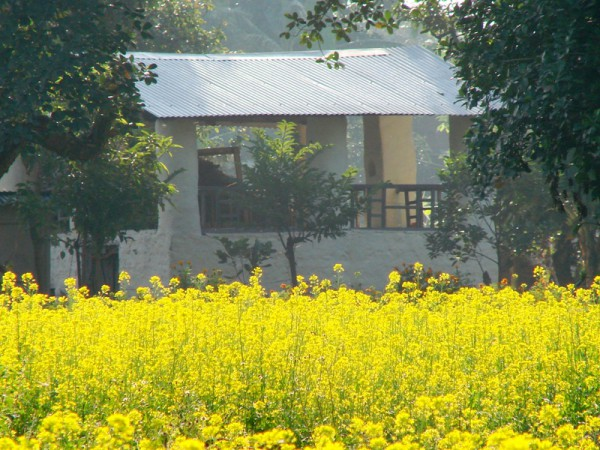 The village Chaupal, a common meeting place, built by Corbett at Choti Haldwani