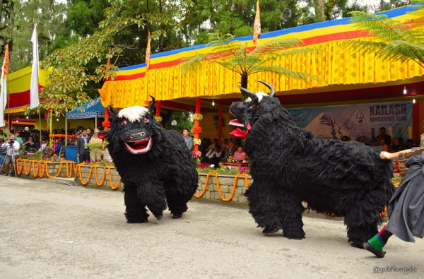 These are Tibetan forms of religious dance performed as tribute to the animal Yak, which is necessary for the survival of man at high altitudes.
