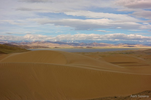 Photos taken along this stretch got us steppe, streams, desert dunes and snow-capped mountains all in the same frame.