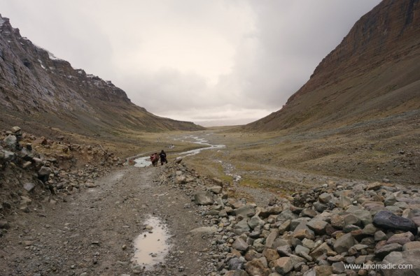 It would be impossible to get lost in this valley, though there are dozens of trails that separate and re-converge along the eastern bank of the Lha Chu.