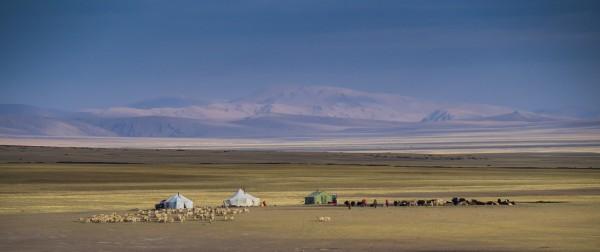 Modern Nomads at Barkha; in the shadow of Gurla Mandhata. Photo by Rita Willaert