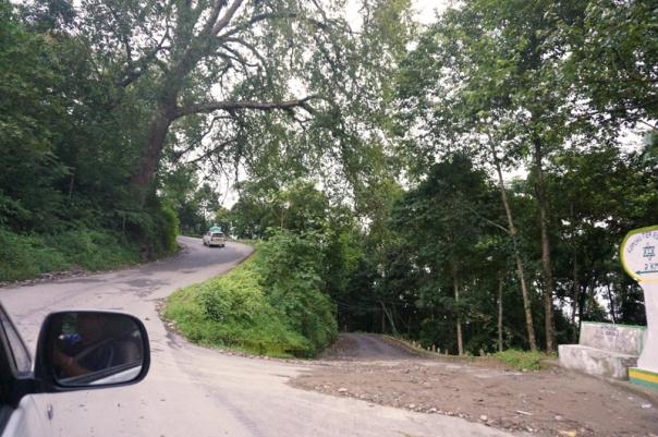 The narrow highway to Darjeeling