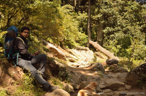 Taking a short rest in a wooded patch of the climb between doosri and teesri