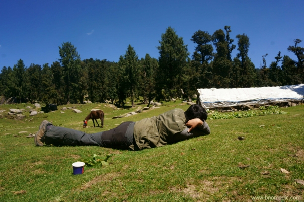 Napping at Jamnala campsite; the paper cup in the frame was properly disposed off at Nohradhar and not at the campsite